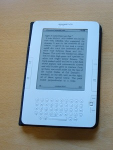 Kindle, standardutgaven